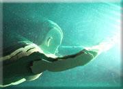 Test-Dive